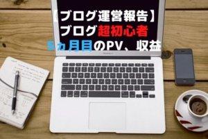 ブログ超初心者の運営報告【5ヵ月目】