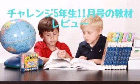 チャレンジ小学5年生11月号の教材とレビュー【2021年版】